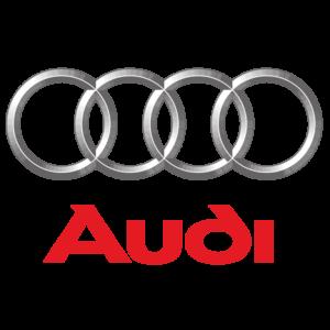 Audi A1 1.6 TDI 90 pk CR DPF 89.7PS/66.0KW 03L906023KJ  SM2G0LB000000
